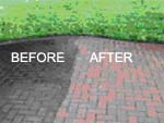 before and after path cleaning